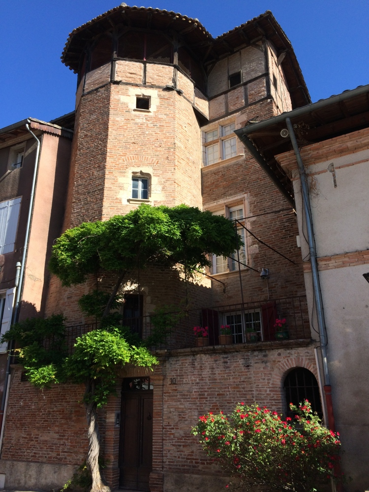 Market day in Gaillac (6/6)