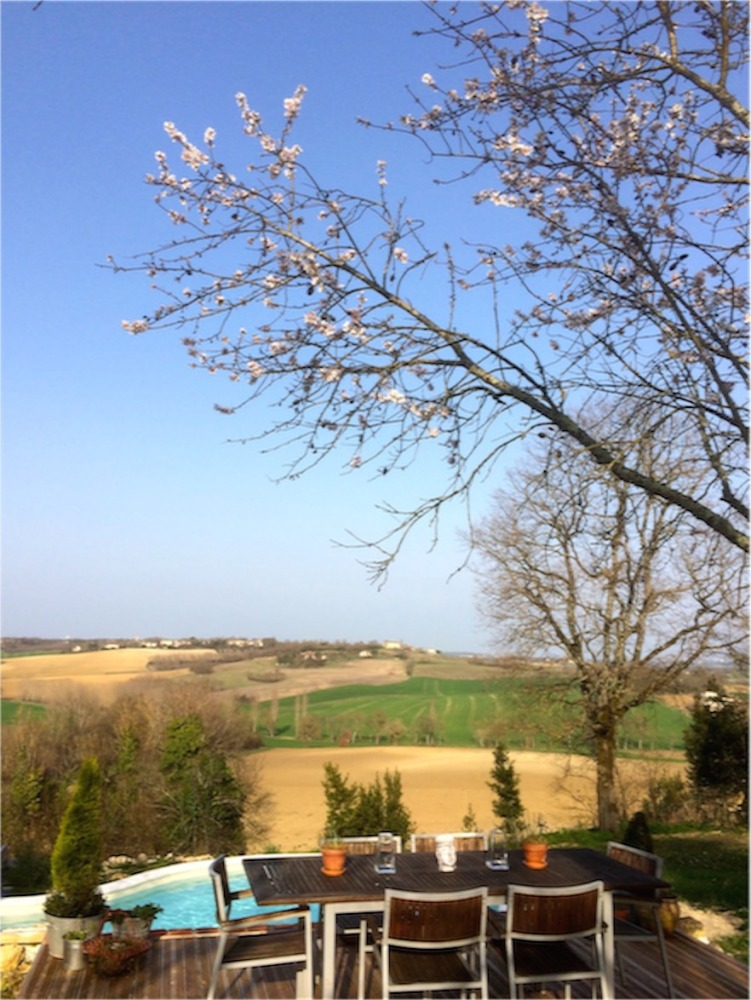 Blue Sky & Blossoms - well sometimes! (1/6)