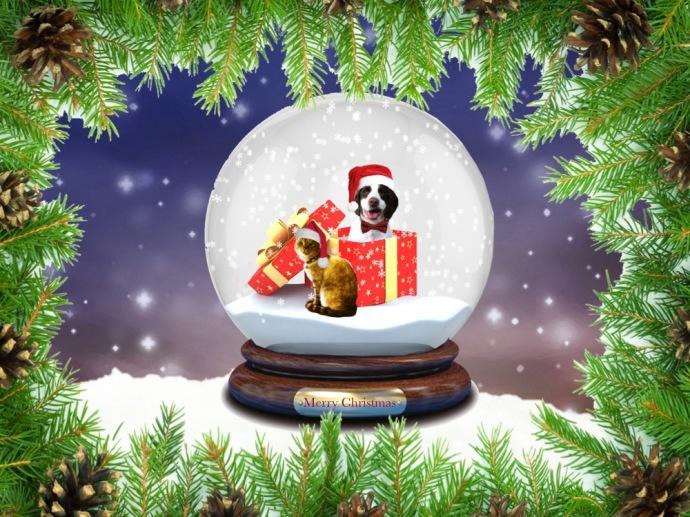 Christmas blog 15